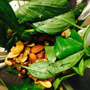 Pesto in Italian means to crush or pound. Here are the ingredients in the blender right before they were blended together: fresh basil leaves, raw walnuts, pecans, roasted almonds, pistachios, toasted cashews & hazelnuts